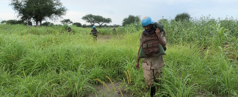 SectorTroops of UNISFA 's South Sector continue to patrol vital points in their area of responsibility to ensure that Misseriya and Ngok Dinka communities are sharing grazing land and water peacefully.